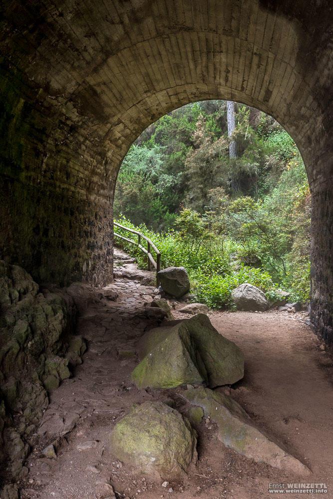 Den Tunnel unter der Straße durch...