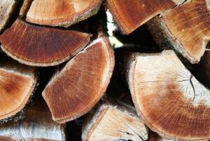 Holz hinter der Hütte