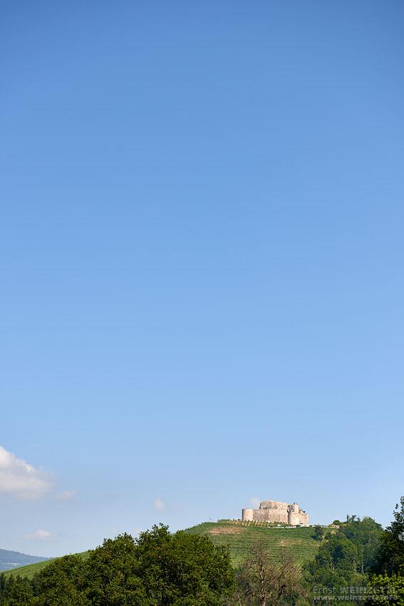Taggenbrunn blickt weit übers Land.